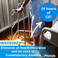Florida - ELEMENTS OF HEALTH INSURANCE & IT'S USES IN CONTEMPORARY AMERICA (CE) (INSCE002FL14)